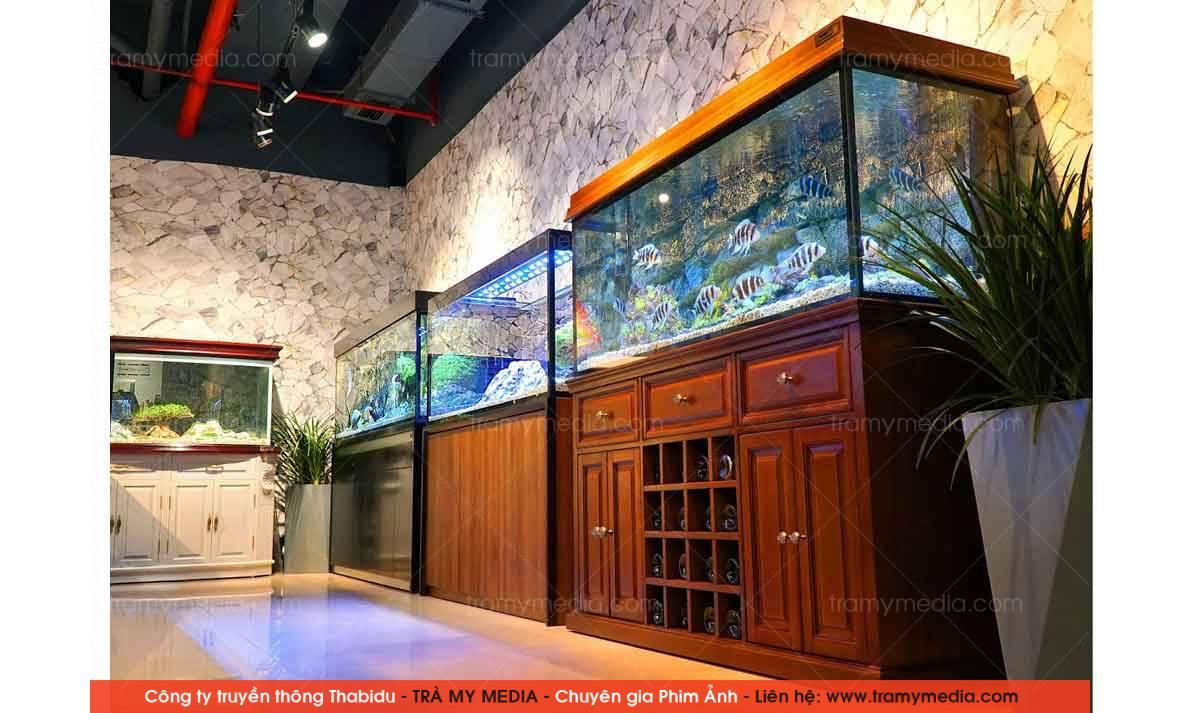 Chụp ảnh sản phẩm Bể Cá Blue Luxury 11