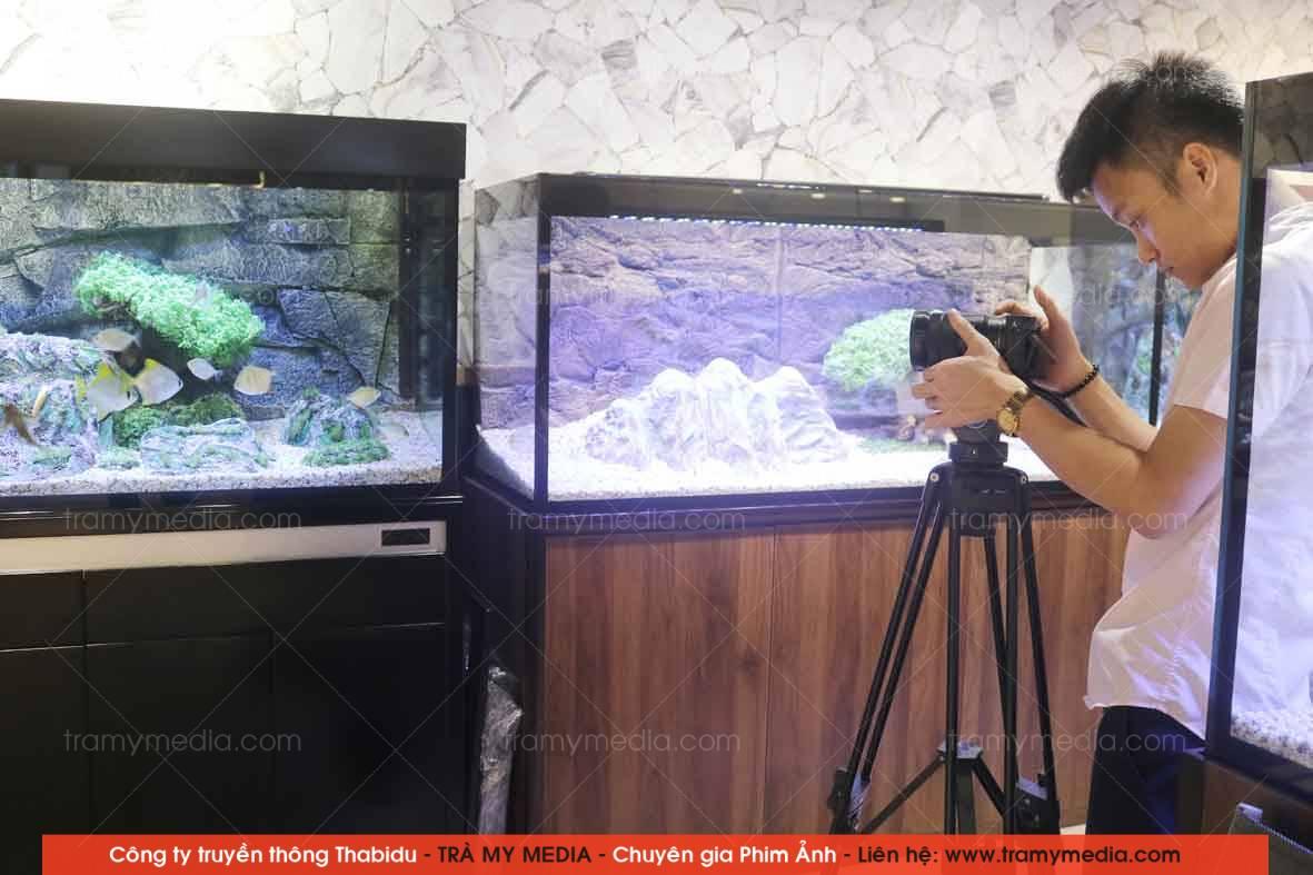 Chụp ảnh sản phẩm Bể Cá Blue Luxury 13