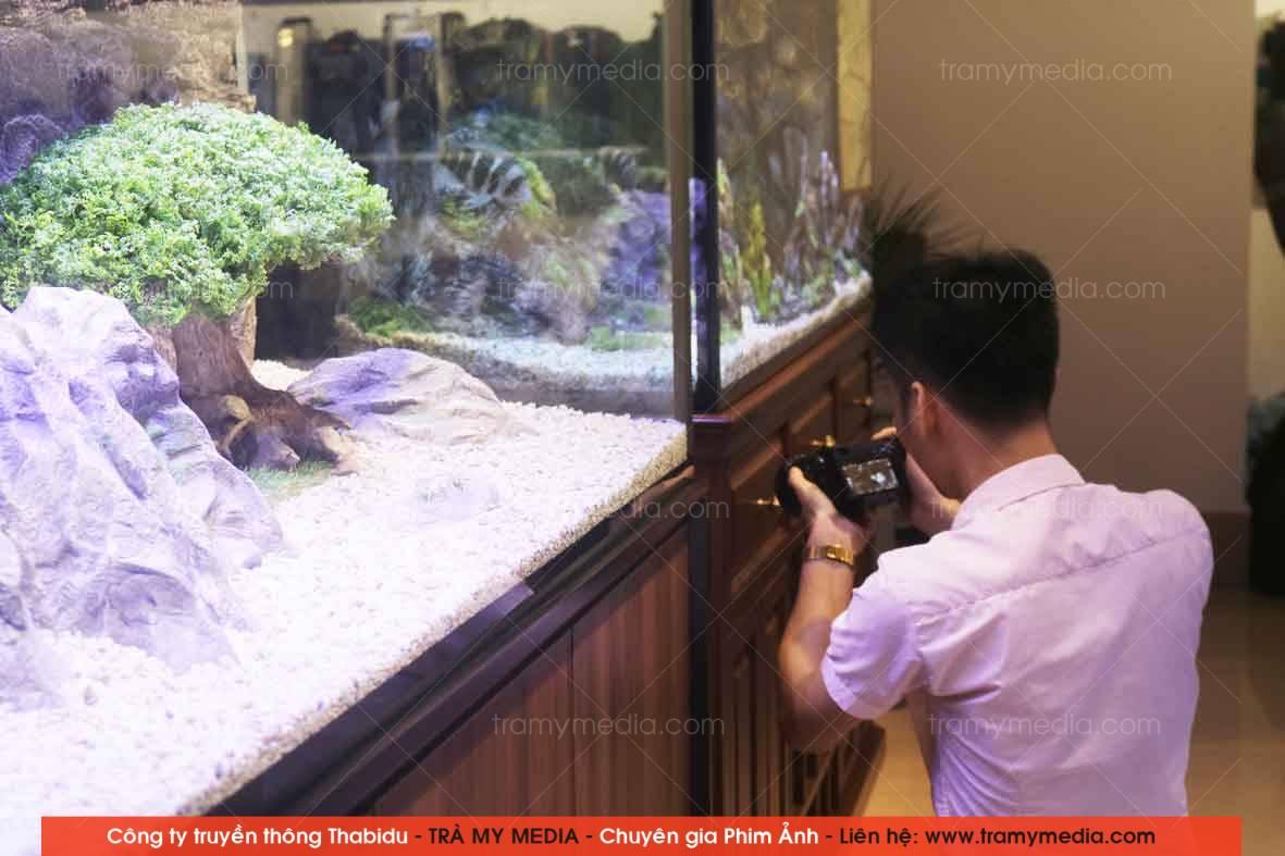 Chụp ảnh sản phẩm Bể Cá Blue Luxury 7